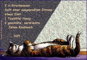 20122007_nap_ChetPhillips&Kirsch
