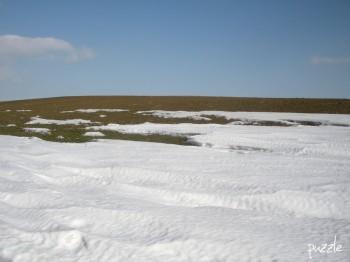2010-02-21 Neusiedl am See,  Tauwetter - das Ackerbraun kommt hervor.