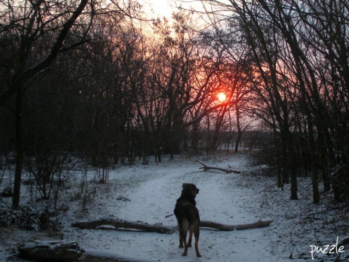 Sonnenaufgang auf dem Kalvarienberg