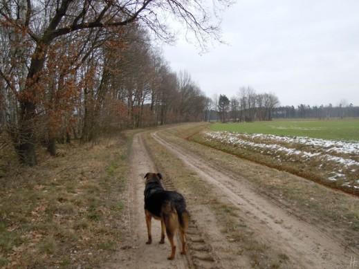 2011-02-19 001 Lucie bPannecke-Dünsche