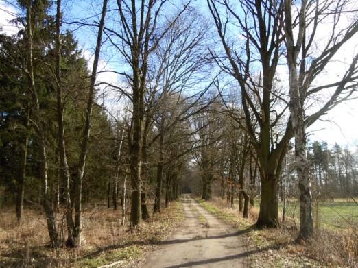 DSCN0458 2011-02-11 Lucie Weg