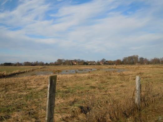 DSCN0479 2011-02-12 Neritz