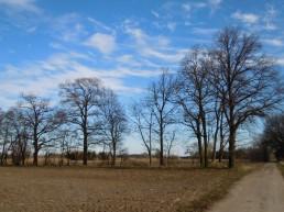 DSCN0481 2011-02-12 bNeritz-Jeetzel
