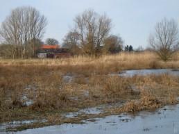 DSCN0519 2011-02-12 Neritz