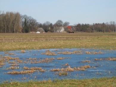 DSCN0521 2011-02-12 Jeetzel