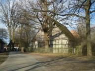 DSCN0569 2011-02-12 Neritz