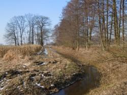 DSCN1090 2011-02-22 zwJabel-SeerauDrawehn-Satemin