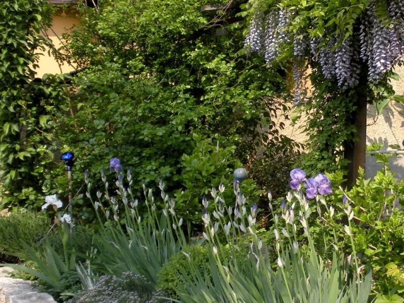 2009-05-01-012.jpg