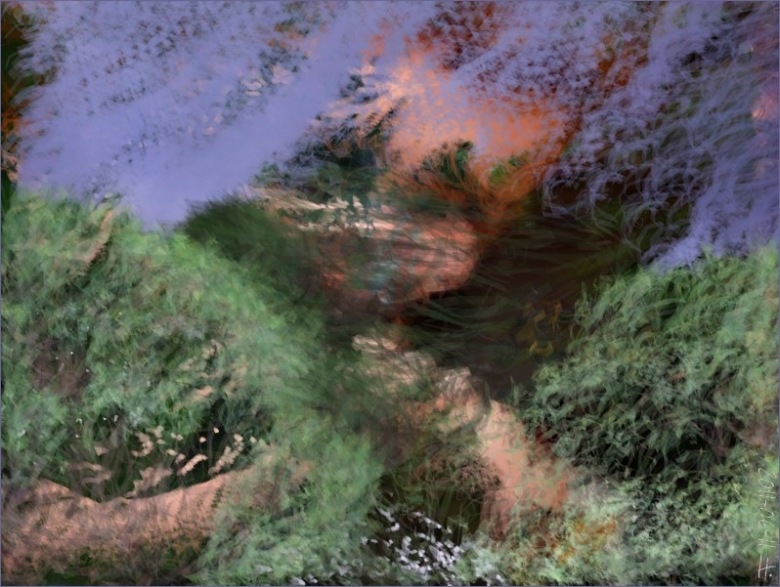 2011-06-11-Nature.jpg
