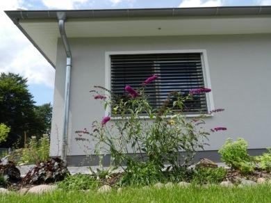 2011-07-19-LchowSss-Garten-143-BuddleijaFenster.jpg