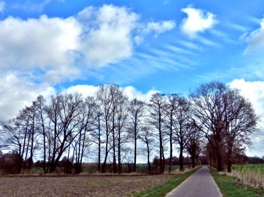 2012-04-01 bBanneick 037