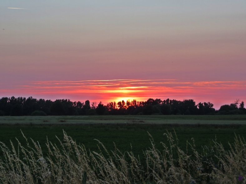 2013-07-07 LüchowSss 172 Sonnenuntergang