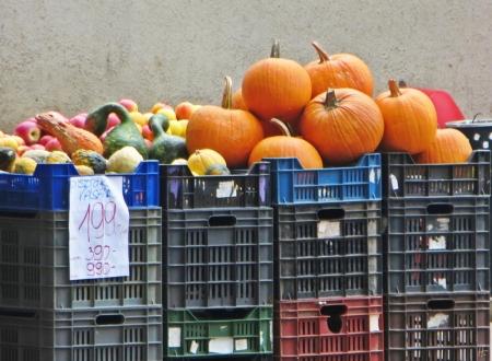 2013-10-11 Györ_vormittags 032 Kürbisse an der Zechmeister utca