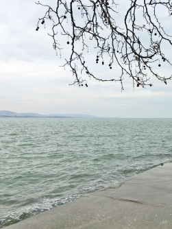 2014-02-23 Ausflug zum Balaton CIMG1887 Balaton auf Tihany