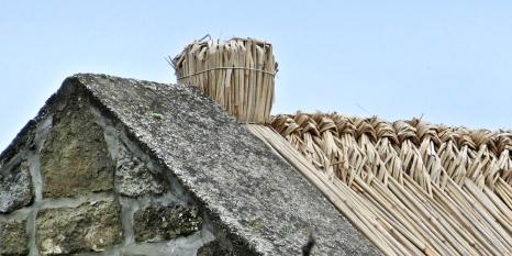 2014-02-23 Ausflug zum Balaton CIMG1911 Tihany Haus+Reetdach