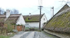 2014-02-23 Ausflug zum Balaton CIMG1925 Tihany Haeuser+Reetdach