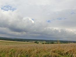 2014-08-04 CIMG2897 bei Höchstädt