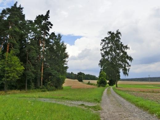 2014-08-04 CIMG2907 bei Thierstein