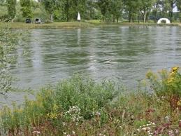 Angler und Kunst am Isar-Ufer