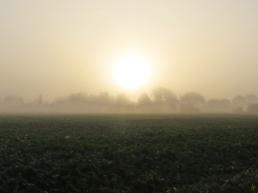 2014-11-11 bLüchow 026 Sonnenaufgang