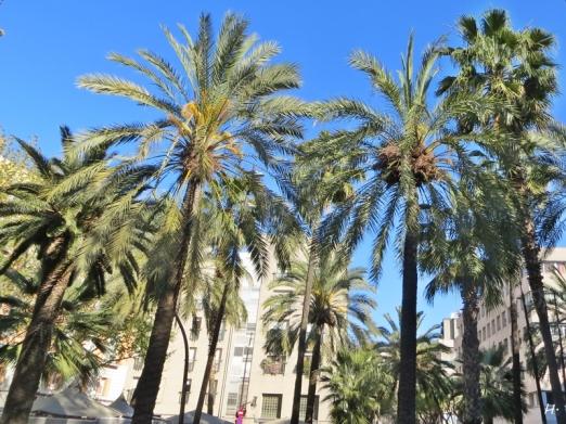 2015-04-09 Barcelona IMG_1825 Rambla de Raval