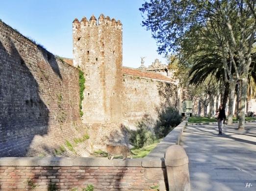 2015-04-09 Barcelona IMG_1846 Drassanes Reials de Barcelona