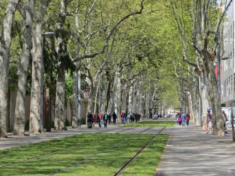 2015-04-11 Barcelona IMG_2330 12h43 Vila Olímpica-Carrer de Villena-Zoo-Straßenbahn