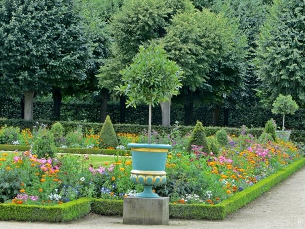 2015-07-30 BERLIN-Tage 770 Charlottenburg Schlosspark Charlottenburg Blumen