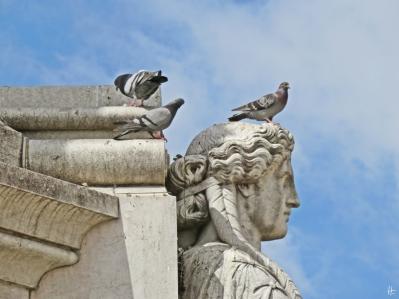 Praça Dom Pedro IV : Tauben und eine der vier Tugenden am Sockel d. portugiesischen Bildhauers Germano José de Salles