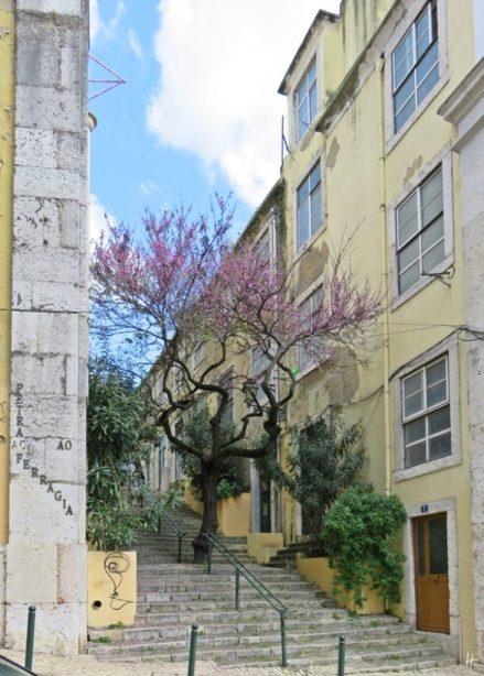 2016-03-31 Lissabon (Portugal) Tag 3-34 Calçada Ferragial (1) Travessa do Ferragial