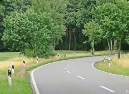 2016-06-30 Kukate 'St(rassen)rand'-Grasnelke (Armeria maritima) (1)