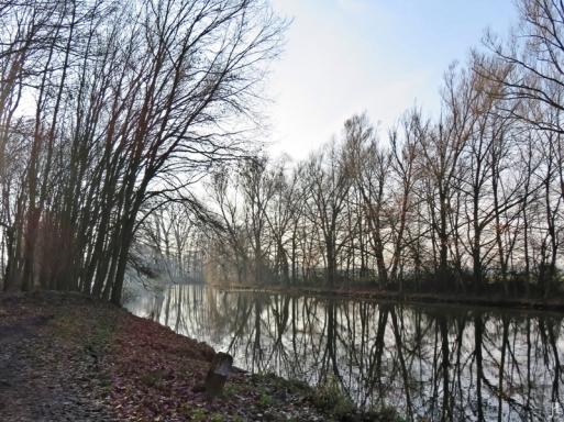 2016-12-21-bluechow-an-der-jeetzel-9-spiegelung