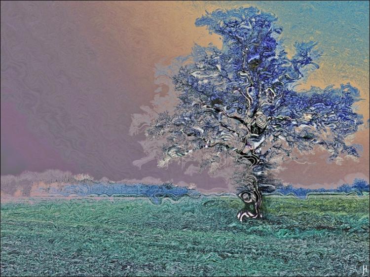 2017-02-14-bluechowsss-2-ein-bild-von-einer-eiche