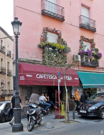 """Calle de Santa Isabel - Caféteria und Kakteen-""""Rahmen"""" um zwei Fenster darüber"""