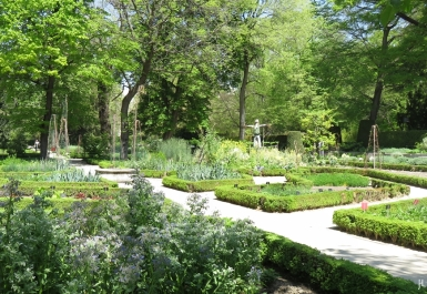 2017-04-12_8 MADRID-Urlaub (161) Real Jardín Botánico de Madrid - Gemüsegarten