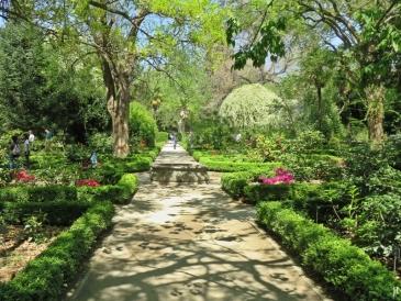 2017-04-12_8 MADRID-Urlaub (174) Real Jardín Botánico de Madrid
