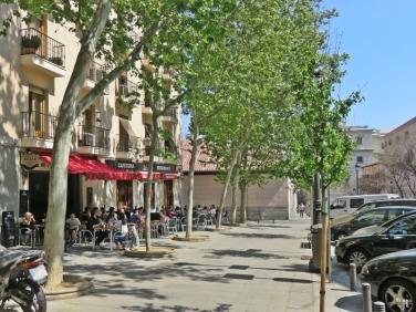 Calle de Santa Isabel - Platanen vor der 'Kárdamom' Cafe-Bar: Zeit für ein kleines Mittagessen!