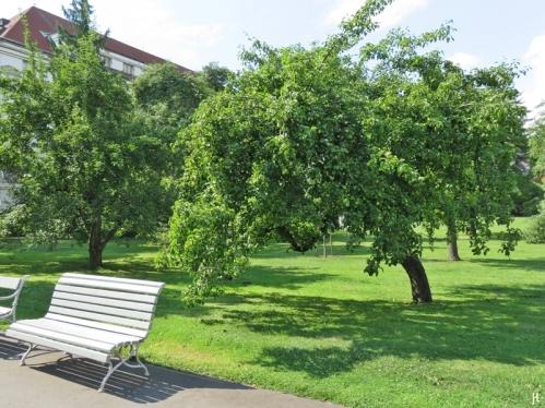 2017-07-15 Prag_17 nachmittags Kleinseite (sonnig) (8) Vojan Park