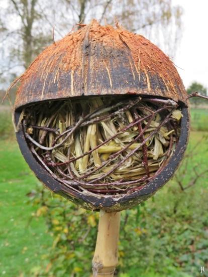 Kokosschale mit Stroh als Ohrwurm-Hotel - oder wer es sonst noch braucht.