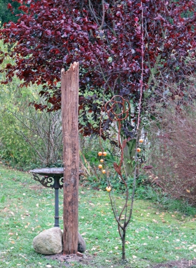 2017-10-28 LüchowSss Garten (19) Zierapfel (Malus ) 'Golden Hornet' neugepflanzt, vom Küchenfenster aus