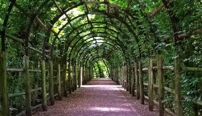 2018-08-17 morgens SCHWERIN Laubengang im Schlossgarten (3)