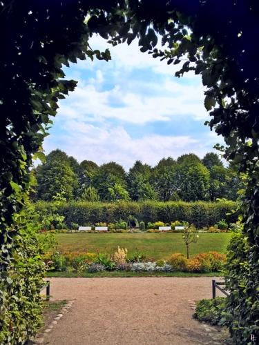 2018-08-17 morgens SCHWERIN Laubengang im Schlossgarten (6)