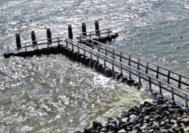 2019-04-09 NL Abschlussdeich des IJsselmeeres (6) Damm-Innenseite unterhalb des Aussichtsturms
