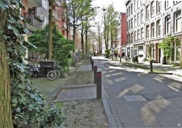 2019-04-11 NL Amsterdam De Pijp (3) Frans Halsstraat - etwas Grün