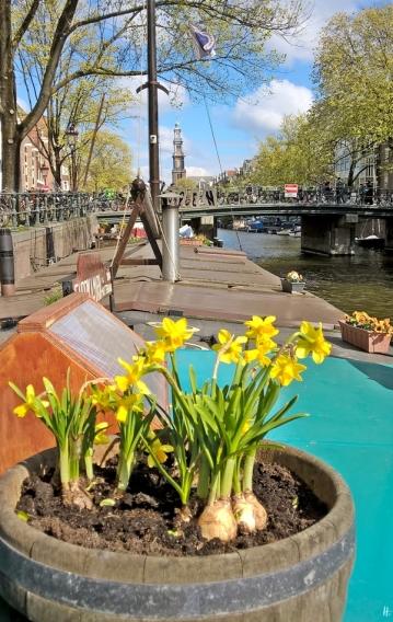 2019-04-13 NL Amsterdam Prinsengracht (17) Blick vom Museumsboot zur Berensluis